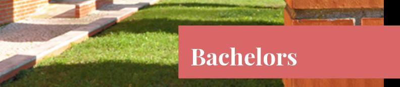 bachelors_ensino